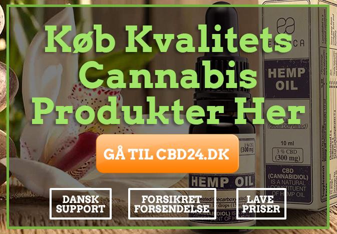 cannabis olie fra cbd24.dk